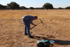 Casi imposible sacar muestras de suelo - tierra seca y dura