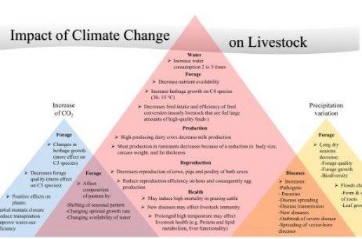 Cambio climático y ganadería: Impactos, Adaptación y Mitigación