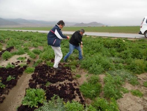 Visitamos una finca ecológica en Puebla de Don Fabrique (Granada)