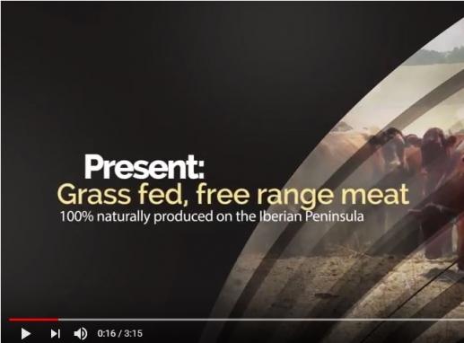 Volterra & Golden World Wide present free range grass fed beef from the Iberian Peninsula
