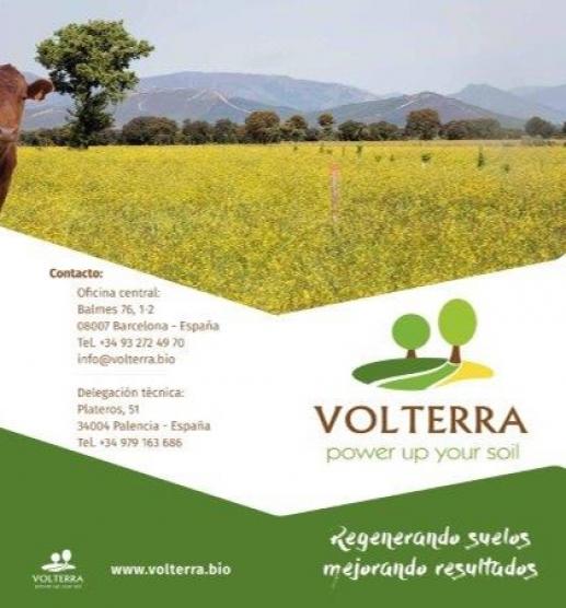 Nuevo Tríptico Volterra