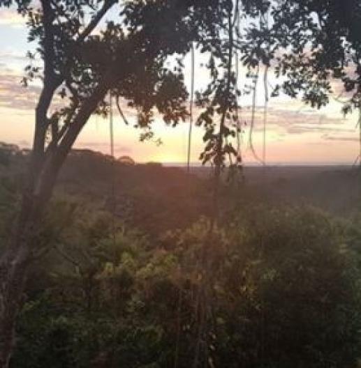 Agrosilvicultura en Costa Rica - Visita de estudio de Volterra
