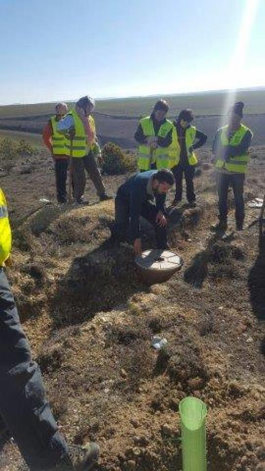 Voluntarios apoyaron a Volterra en una acción de reforestación