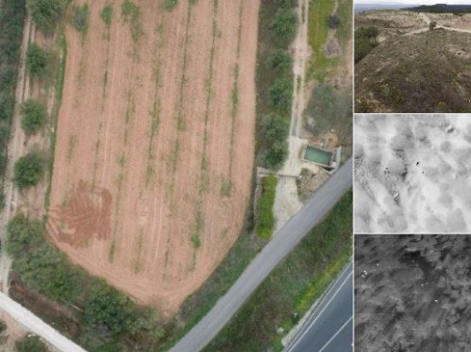Nuevo interés para la protección de fincas agrícolas con láser.