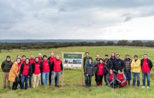 Volterra y Land Life Company con IG&H Consulting desarrollan ambicioso proyecto agroforestal en Freixo do Meio